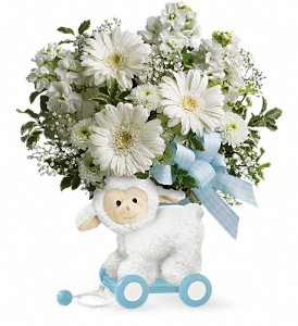 Teleflora's Sweet Little Lamb - Baby Blue in Concord NC, Pots Of Luck Florist