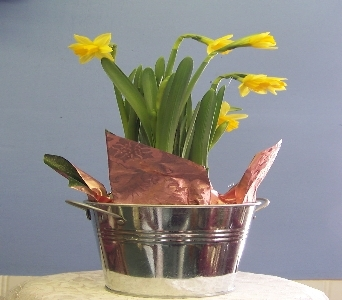 Spring in a bucket in Claremont NH, Colonial Florist