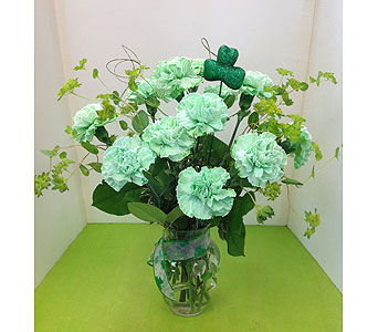 T & C 12 Green Carnations in Manhasset NY, Town & Country Flowers