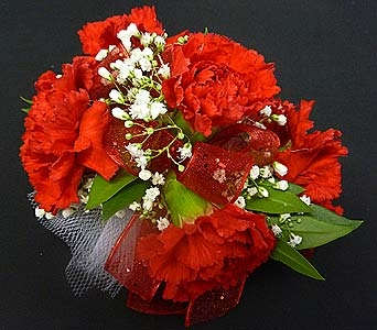 Red Mini Carnation Corsage in Mesa AZ, Watson Flower Shops