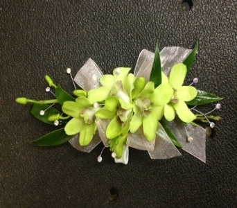 Prom Corsage- Green Dendrobium Orchids in Newton NC, Newton Florist