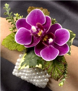 Purple Phalaenopsis Corsage in Kennett Square PA, Barber's Florist Of Kennett Square