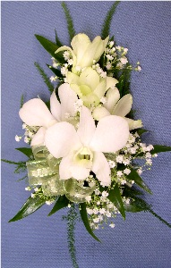 White Dendrobium Corsage in Kennett Square PA, Barber's Florist Of Kennett Square