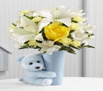 Baby Boy Big Hug Bouquet in Fond Du Lac WI, Haentze Floral Co