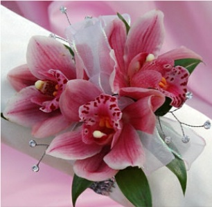 Pink Orchid Corsage in Kennett Square PA, Barber's Florist Of Kennett Square