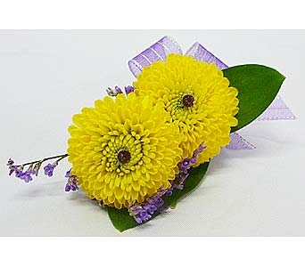 Yellow Button Pom Boutonniere in Mesa AZ, Watson Flower Shops