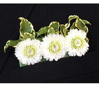 White Button Pom Suit Pocket Board in Mesa AZ, Watson Flower Shops