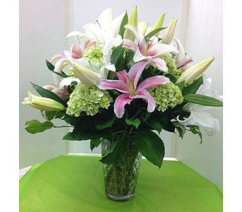 Pink Lily & Green Hydrangea in Manhasset NY, Town & Country Flowers