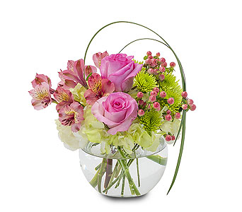 Joy in Dearborn Heights MI, English Gardens Florist