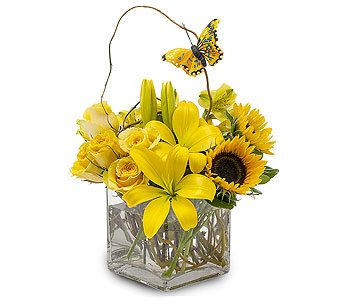 Butterfly Effect in Mount Morris MI, June's Floral Company & Fruit Bouquets