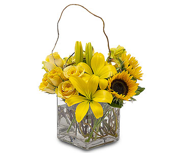 Sunny Side Up in Traverse City MI, Teboe Florist