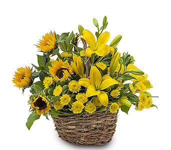Basket of Sunshine in Tacoma WA, Blitz & Co Florist