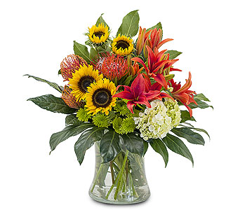 Harvest Sun in Somerset MA, Pomfret Florists