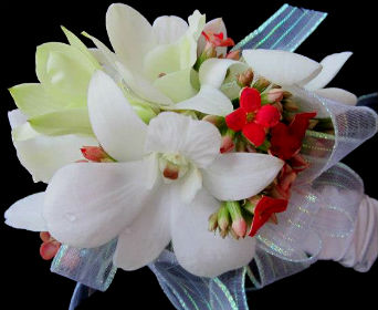 White and Red in Farmington CT, Haworth's Flowers & Gifts, LLC.