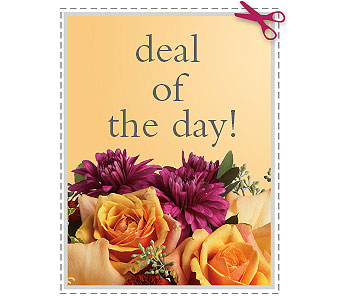 Deal of the Day in Jacksonville FL, Deerwood Florist