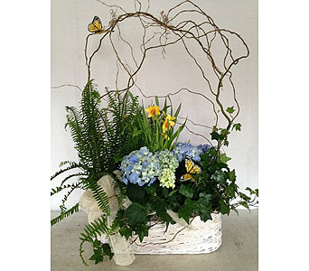 Custom Spring Plant Basket in Crafton PA, Sisters Floral Designs