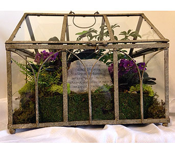 Terrarium in Crafton PA, Sisters Floral Designs
