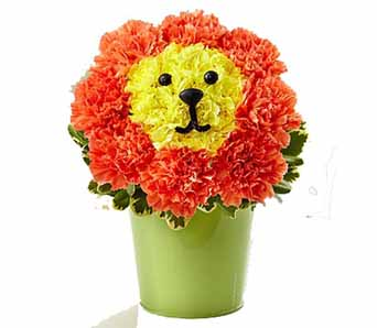 Dandy Lion Flowers in Santa Monica CA, Edelweiss Flower Boutique