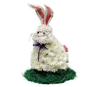 Myers Bunny in Branford CT, Myers Flower Shop
