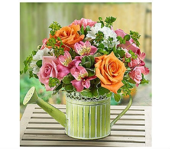 Showers of Flowers� in Watertown CT, Agnew Florist