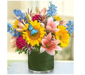 Simple Sophistication™ dans Watertown CT, Agnew Florist