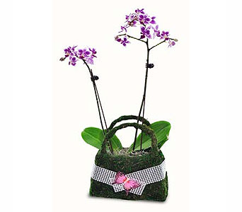Orchid Floral Purse in Las Vegas NV, Flowers By Michelle