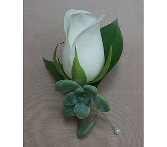 Succulent White Rose Boutonniere in West Los Angeles CA, Westwood Flower Garden