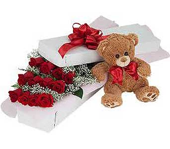 Dozen RED Roses Boxed With Teddy Bear in Brooklin ON, Brooklin Floral & Garden Shoppe Inc.