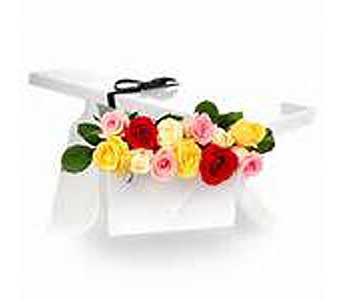 Boxed Dozen ASSORTED COLOUR Roses in Brooklin ON, Brooklin Floral & Garden Shoppe Inc.