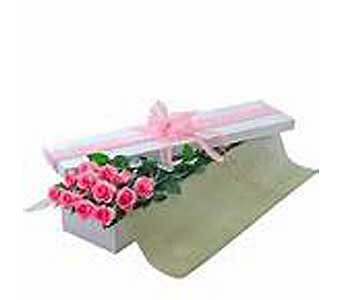 Boxed Dozen PINK Roses in Brooklin ON, Brooklin Floral & Garden Shoppe Inc.