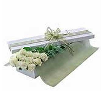 Boxed Dozen WHITE Roses in Brooklin ON, Brooklin Floral & Garden Shoppe Inc.