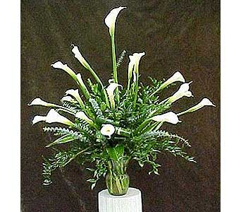 Fresh Calla Lily Arrangement in Huntington WV, Spurlock's Flowers & Greenhouses, Inc.