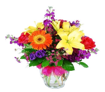 Bright & Sassy  in Hollywood FL, Al's Florist & Gifts