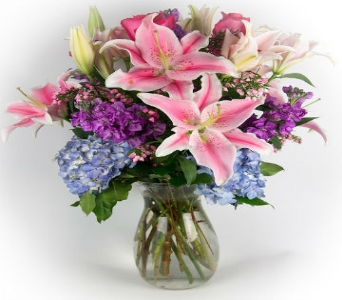 True Blooms in Hollywood FL, Al's Florist & Gifts