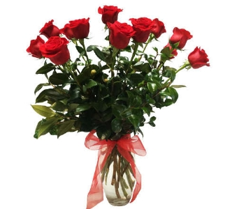 Classic Dozen Roses in Oklahoma City OK, New Leaf Floral Inc