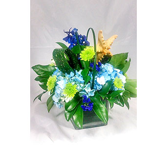 Starfish Cube in Naples FL, Naples Flowers, Inc.