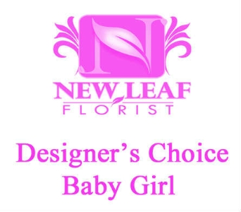 Designer''s Choice - Baby Girl in Oklahoma City OK, New Leaf Floral Inc