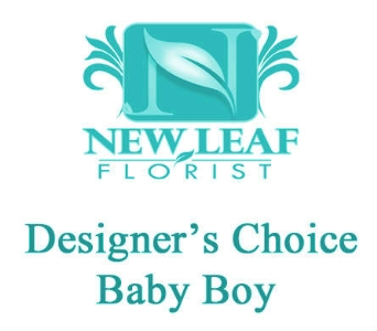 Designer''s Choice - Baby Boy in Oklahoma City OK, New Leaf Floral Inc