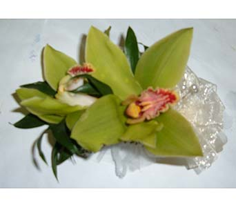 Double Green Cymbidium Orchid Corsage in Weymouth MA, Hartstone Flower, Inc.