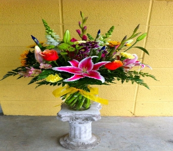 Bright and Cheerful in Novato CA, Natalie & Daria's Flowers & Gifts