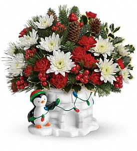 Send a Hug Deck The Igloo by Teleflora in Etobicoke ON, Rhea Flower Shop