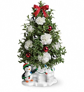 Send a Hug Precious Penguin by Teleflora in Flower Mound TX, Dalton Flowers, LLC
