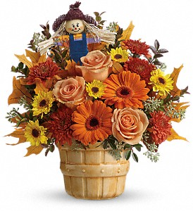 Teleflora's Harvest Cheer Bouquet in Johnson City TN, Roddy's Flowers