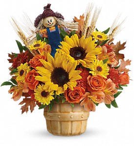 Teleflora's Smiling Scarecrow Bouquet in Oklahoma City OK, Array of Flowers & Gifts