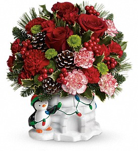 Send a Hug Christmas Cutie by Teleflora in Flower Mound TX, Dalton Flowers, LLC