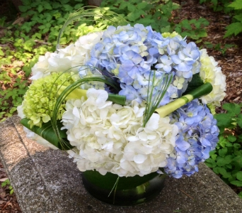 Fathers day flowers delivery guilford ct guilford white house florist hydrangea medley in guilford ct guilford white house florist mightylinksfo