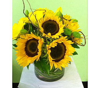 Sunshine in Astoria NY, Quinn Florist