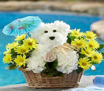 Doggie Paddle in Round Rock TX, Heart & Home Flowers