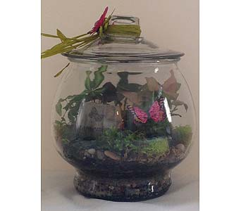Footed Terrarium with Remember Stone in Crafton PA, Sisters Floral Designs