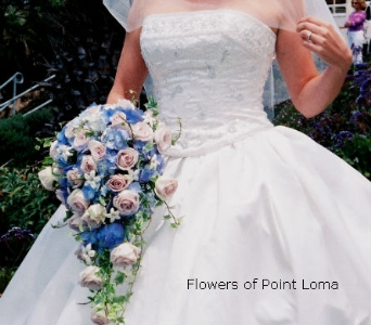 Tracy in San Diego CA, Flowers Of Point Loma